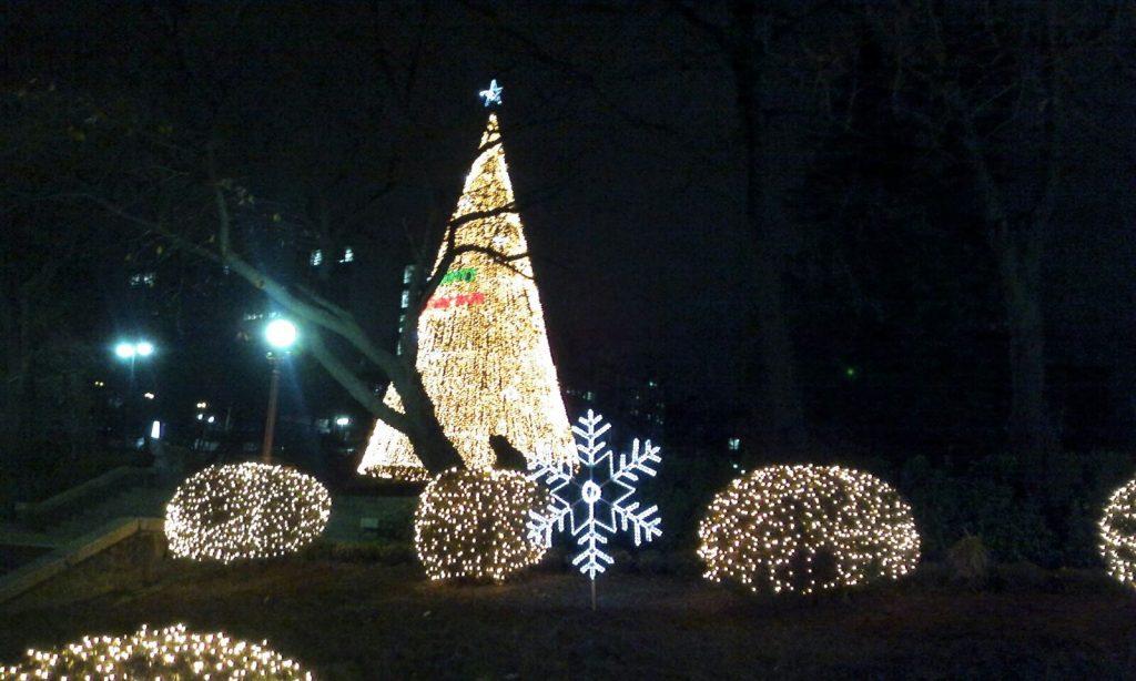 フィンランドのクリスマスツリーのライトアップ